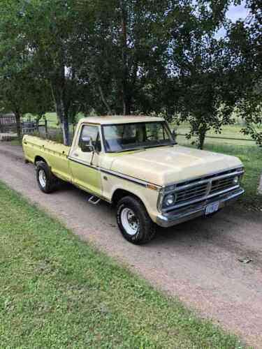 Custom 1973 Ford F100